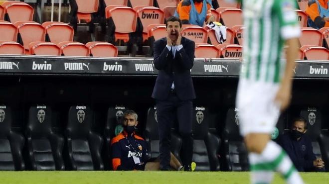 Javi Gracia en la banda de Mestalla.