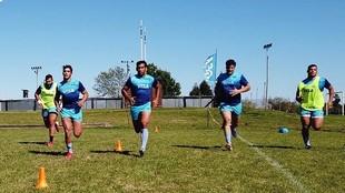 Los Pumas ya tienen equipo para el Rugby Championship 2020