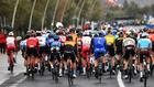 Oleada de positivos en el Giro