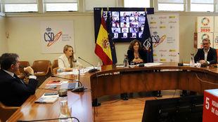 Reunión telemática de Irene Lozano con 130 deportistas.