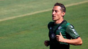 El mexicano Andrés Guardado (34), en un entrenamiento con el Betis.