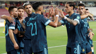 Argentina celebra el gol de Nico