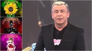 Jorge Javier Vazquez - Mask Singer - Salvame - Antena 3 - Telecinco