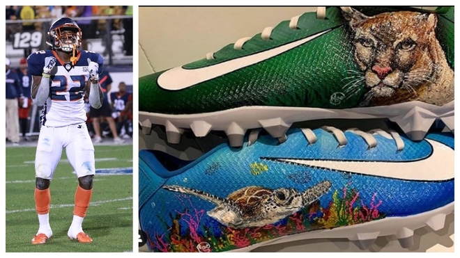 comportarse detalles querido  NFL: D'Ernest Johnson conciencia del cambio climático... a través de sus  zapatillas   Marca.com