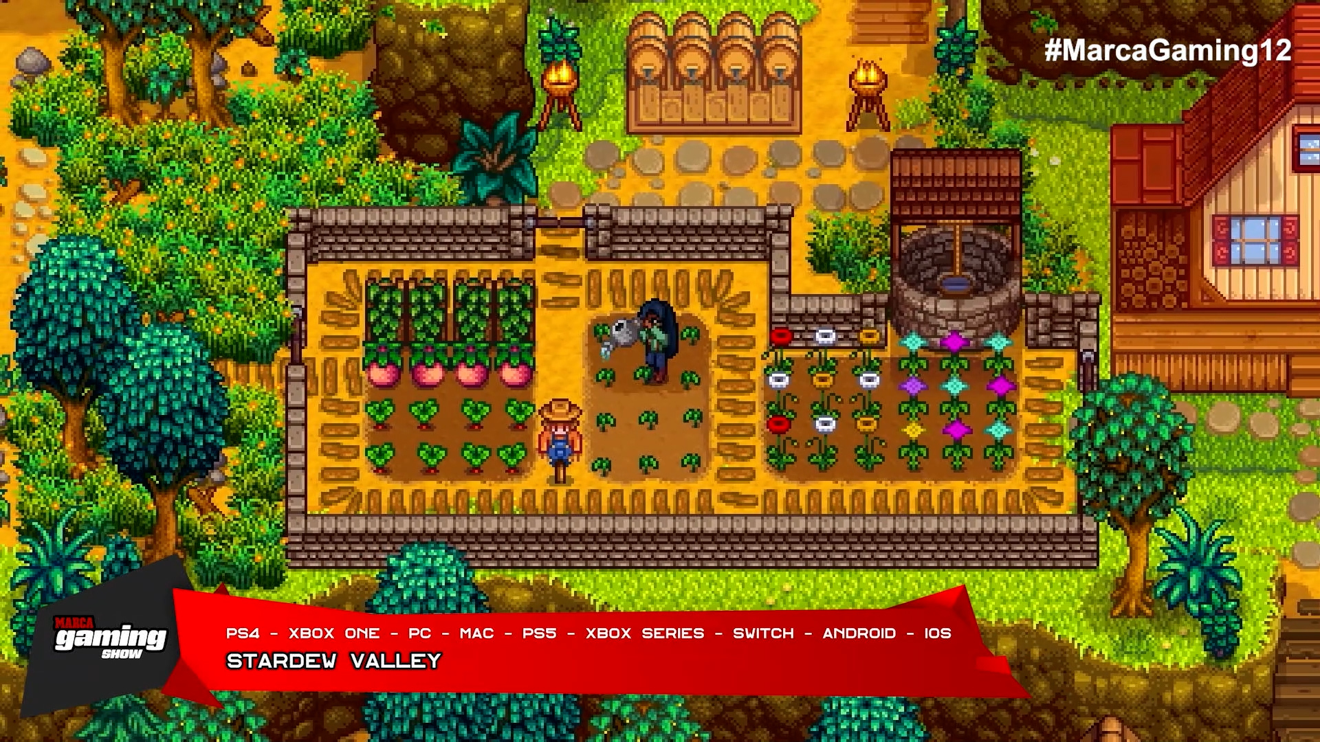 Stardew Valley (PS4 - XBOX ONE - PC - SWITCH - PS5 - XBOX SERIES - SWITCH - ANDROID - IOS )
