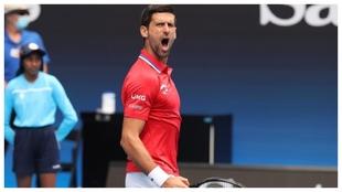 Djokovic celebra la victoria de Serbia