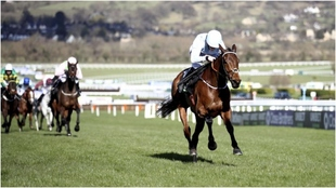 Rachael Blackmore con 'Honeysuckle' gana el Champion Hurdle.