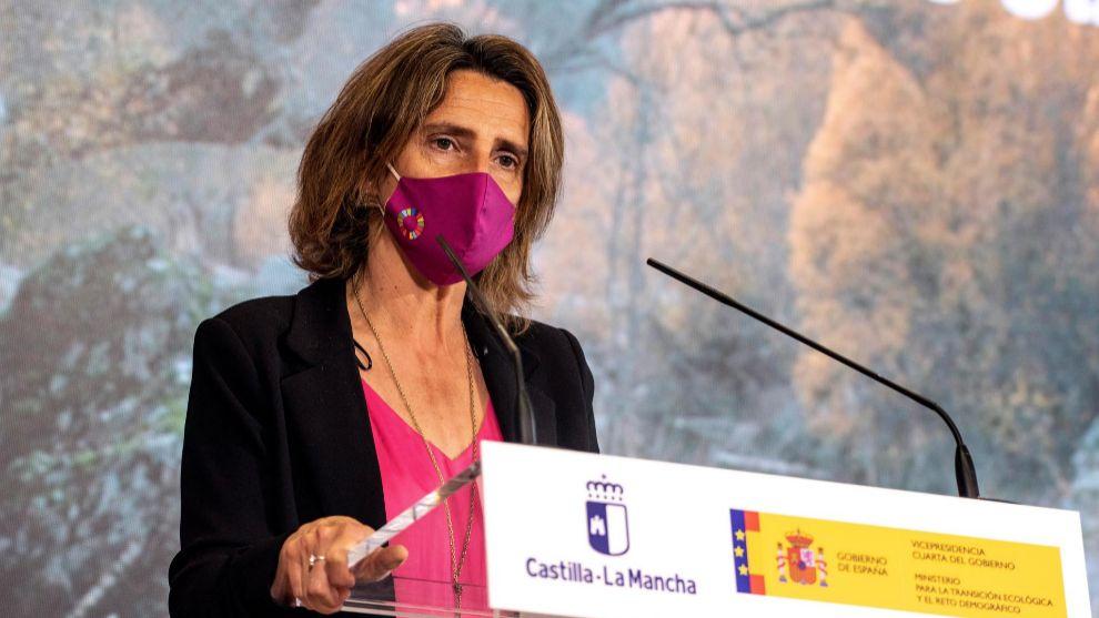 Teresa Ribera Plan Moves III
