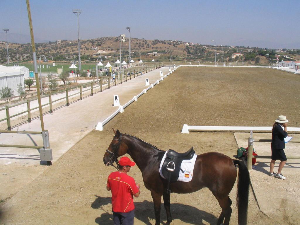 El cuadrilongo olímpico, con uno de los caballos del equipo español