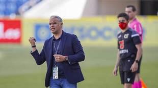Sergio Pellicer, en la banda del Gran Canaria en el partido de la...