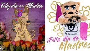 Día de la Mamá 2021: felicitaciones Liga MX