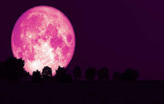 Superluna de fresa: qué es este fenómeno y dónde verlo