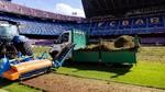 El Barça estrenará césped para el Gamper