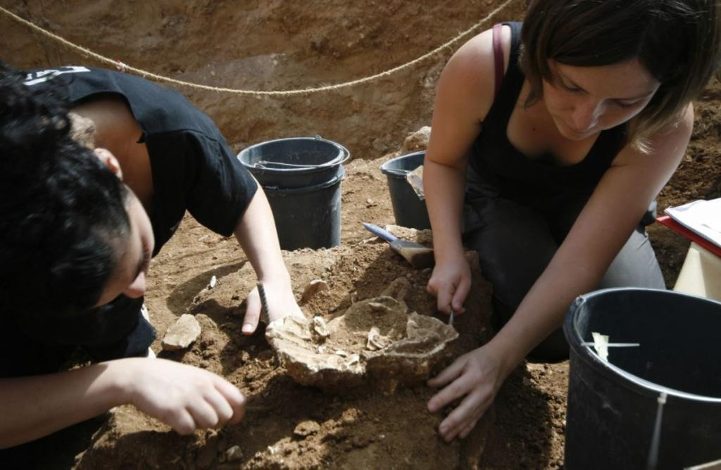 Excavación de un hueso fósil en Nesher Ramla /