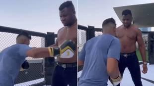 Esto es lo que ocurre cuando un 'mortal' le da 20 puñetazos a un campeón de la UFC