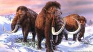 Ilustración de mamuts lanudos.