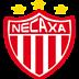 Impulsora del Deportivo Necaxa S.A. de C.V.