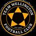 Team Wellington FC