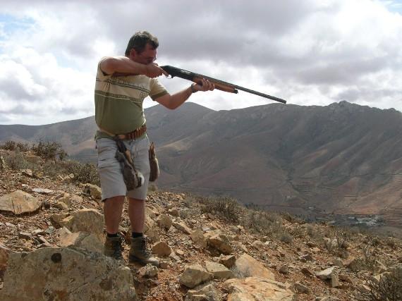 Prohibida la escopeta para cazar conejos en el Parque Nacional del Teide