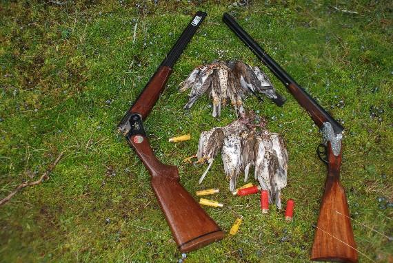 Los cazadores generan muchos impactos, solo por su propio placer, y muchas veces ni siquiera se comen todo lo que cazan.