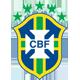 Selecci�n Brasil