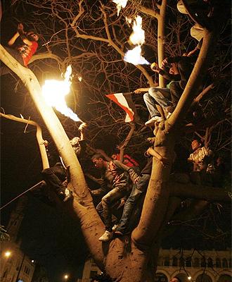 Varios aficionados, en un árbol.