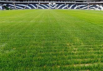 C�sped actual del estadio de Mbombela, en Nelspruit.
