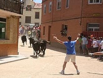 Imagen del encierro de Fuentesa�co celebrado el a�o pasado.