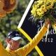 Wiggins: Ganar el Tour es lo m�s grande