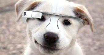Las Google Glass, a la venta al p�blico por 1.500 d�lares