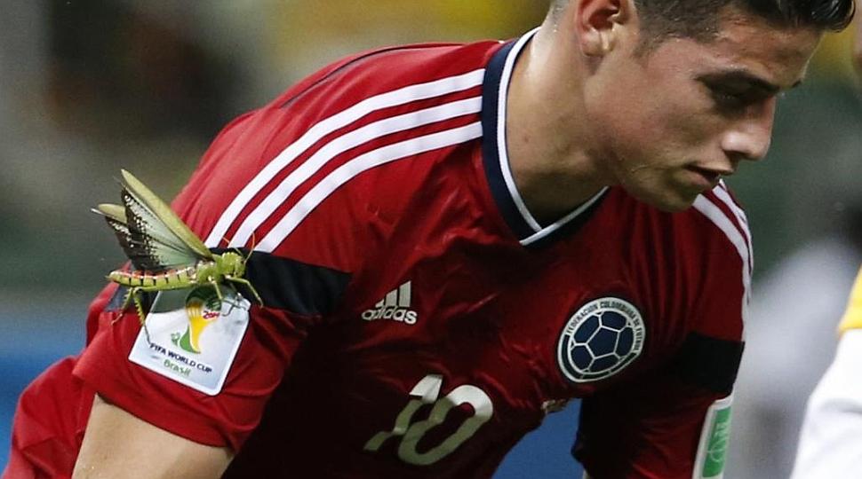 Un insecto gigante 'atacó' a James tras marcar de penalti