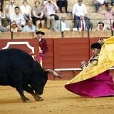 Jiménez Fortes y el propósito del buen toreo