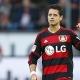 Chicharito est� de diez con el Bayer Leverkusen