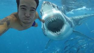 10 selfies hechos segundos antes de morir