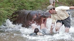 Las 15 peleas más salvajes entre animales y personas