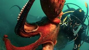 Los animales más grandes jamás encontrados que no creerás que son reales