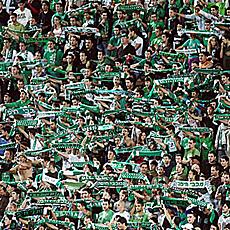 Afici�n del Maccabi Haifa